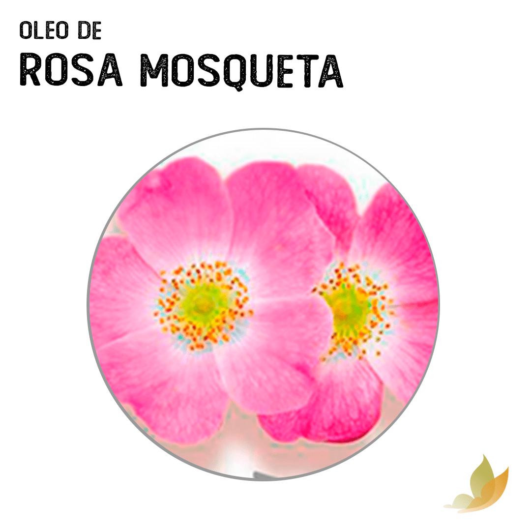 OLEO VEGETAL DE ROSA MOSQUETA