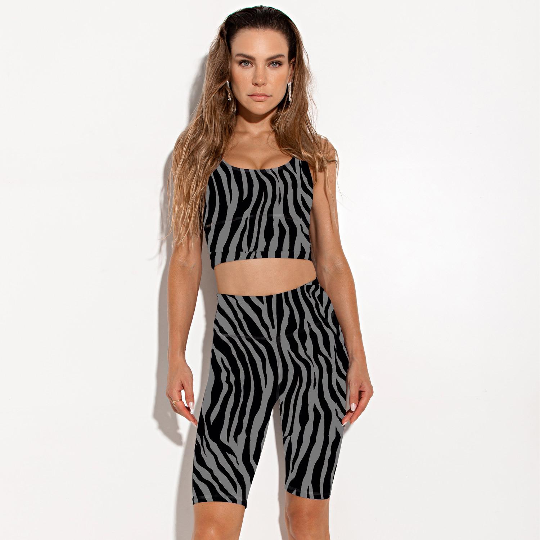 Bermuda Silver Zebra