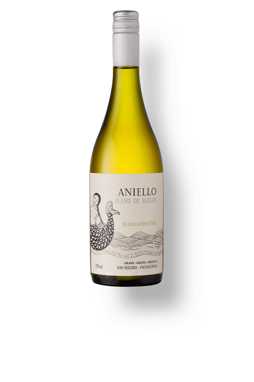 Vinho Aniello SOIL Blanco Pinot Noir 750ml