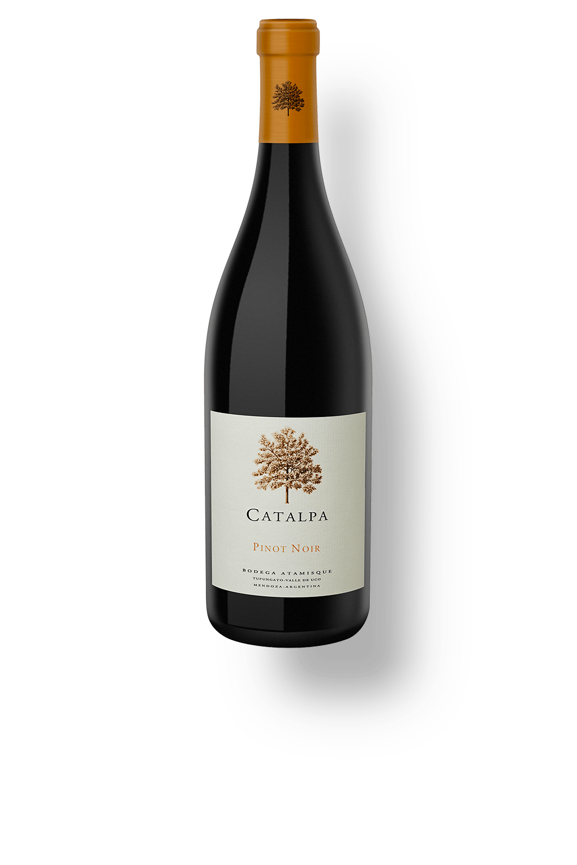 Vinho Branco Saint Felicien Chardonnay 2018 750ml