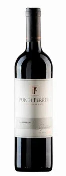 Vinho Puntí Ferrer Carmenère 750ml