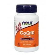 Coq10 Coenzima Q10 100mg Now Foods 50 Cápsulas