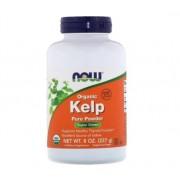 Kelp Puro Alga Marinha, Organic Kelp Now Foods 227g Fonte Iodo