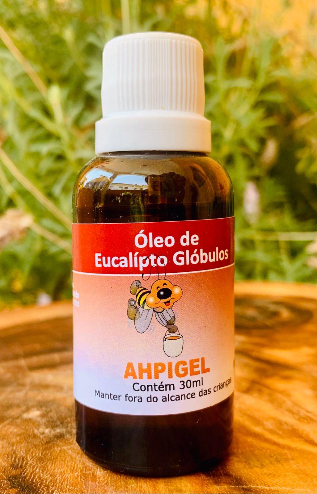 Óleo de Eucalípto Globulos  - Casa do Mel
