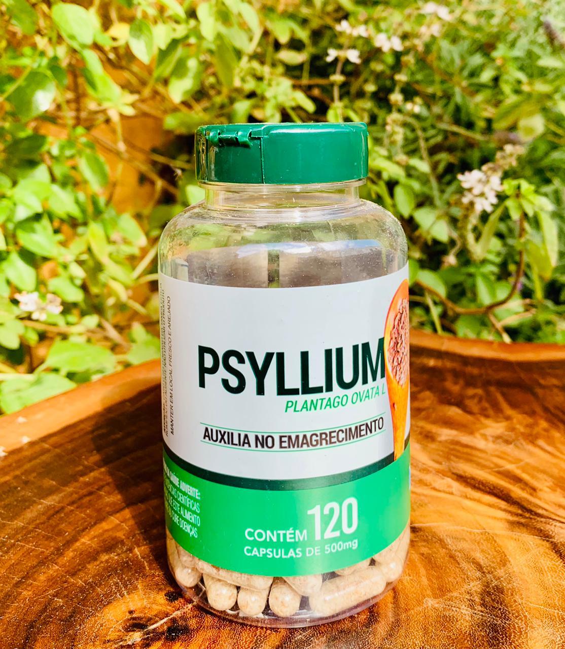 Psyllium  - Casa do Mel
