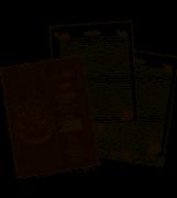 Caderno Para Fichário Colegial Dac - Harry Potter