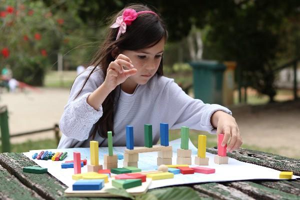 Efeito Dominó - 38 peças - Lume Brinquedos