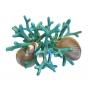 Argola Guardanapo Conchas e Coral Turquesa