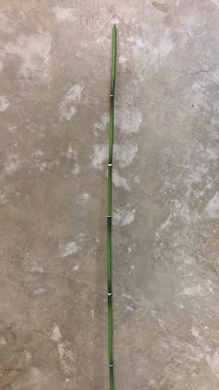 HASTE SY01505 BAMBU 78CM