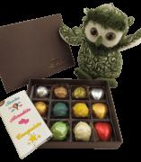 Caixa Chocolate Coruja da Sorte Esperança Presente Amigos