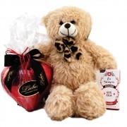 Kit paixão coração de chocolate Pelúcia Barra frase Presente