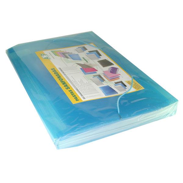 Pasta Sanfonada - Plastica A4 12 Divisoes Azul - ACP