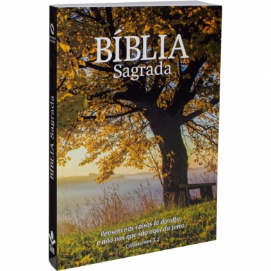 BIBLIA NA60 ECONOMICA OUTONO BROCHURA ILUSTRADA