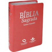 BIBLIA NA LETRA GRANDE C/INDICE CP SINT - PESSEGO