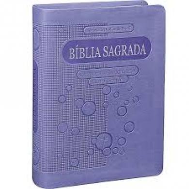 BIBLIA NTLH JOVEM LETRA GRANDE CP COURO SINT - VIOLETA