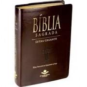 BIBLIA NTLH LETRA GIG C/INDICE CP SINT - MARROM NOBRE