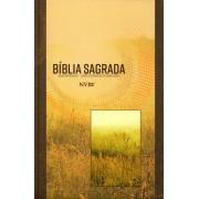 BIBLIA NVI NOVA ORTOGRAFIA CP BROCHURA - NEUTRA