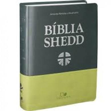 BIBLIA RA DE ESTUDO SHEDD CP FLEX - DUOTONE VERDE