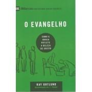 SERIE 9 MARCAS O EVANGELHO - RAY ORTLUND
