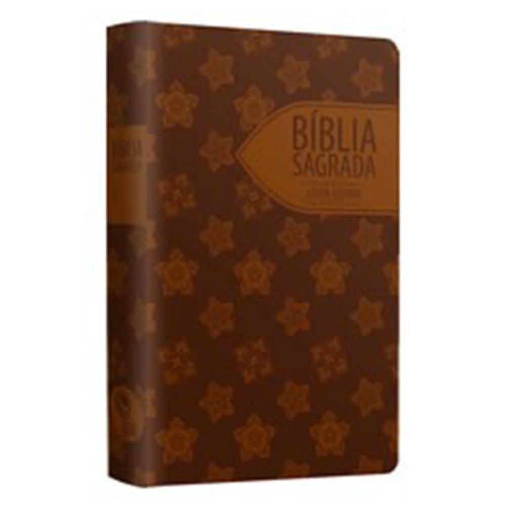 BIBLIA NTLH SAGRADA TEEN - MARROM