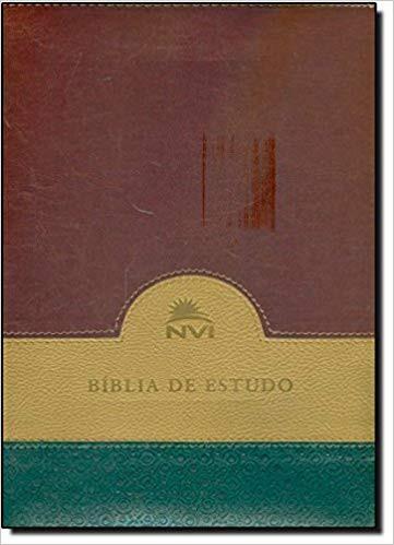 BIBLIA NVI DE ESTUDO CP LUXO S/INDICE - VERDE BEGE E VINHO