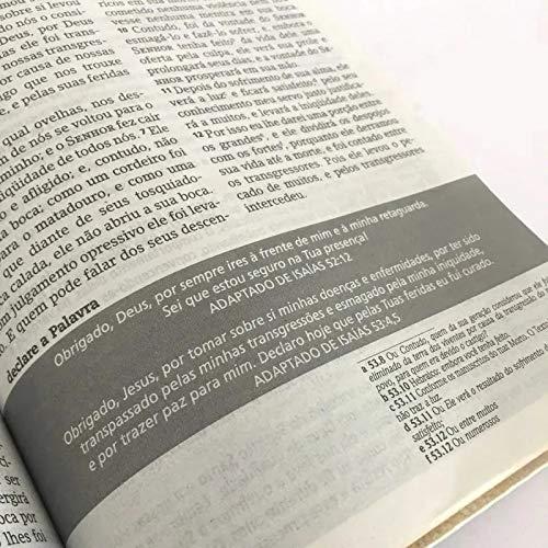 BIBLIA NVI DE ESTUDO JOYCE MEYER CP DURA - ABSTRATA