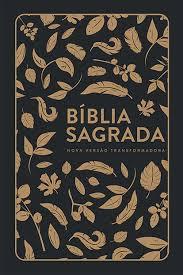 BIBLIA NVT LG CP DURA - FOLHAS DOURADAS