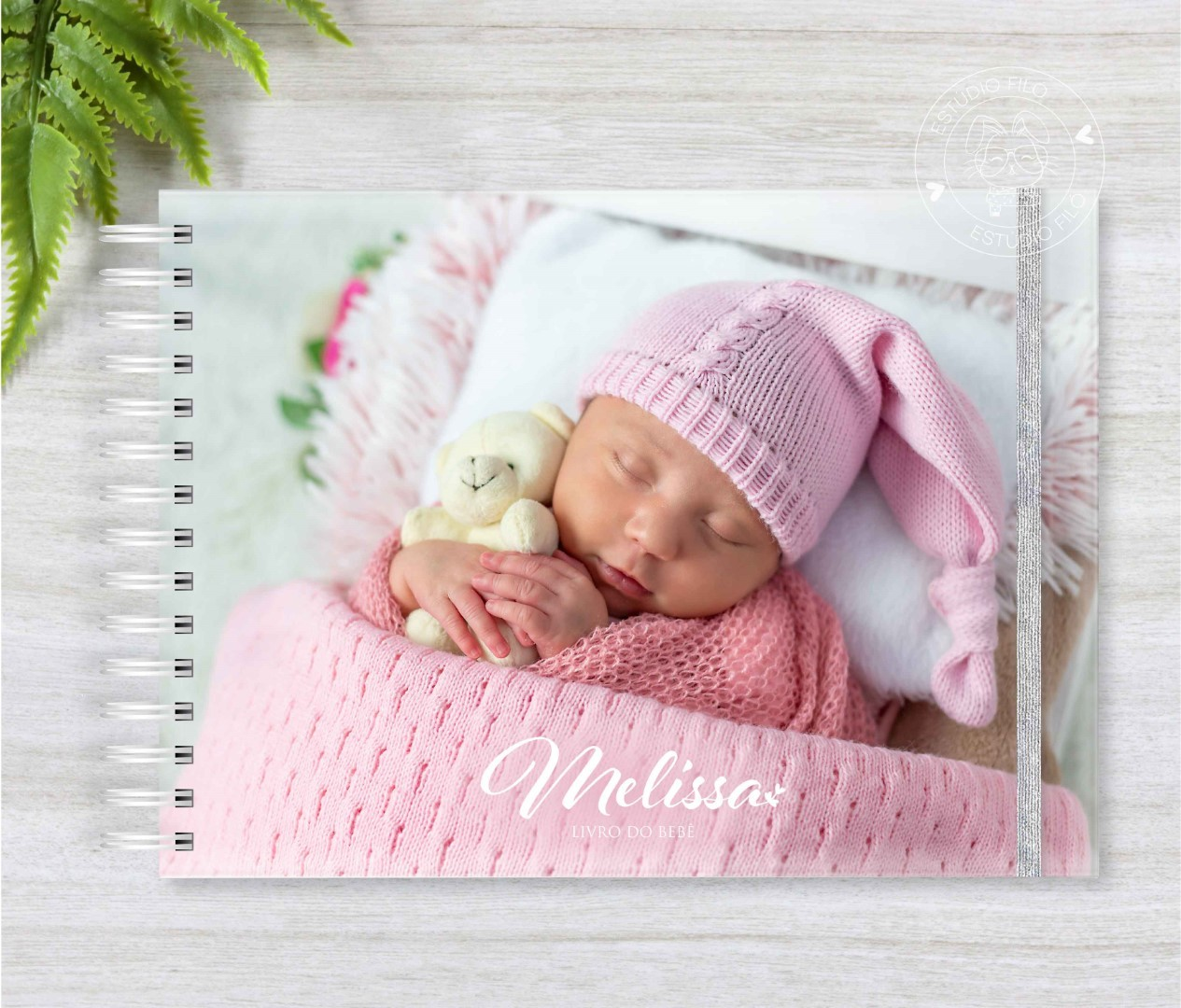 Livro do bebê Foto
