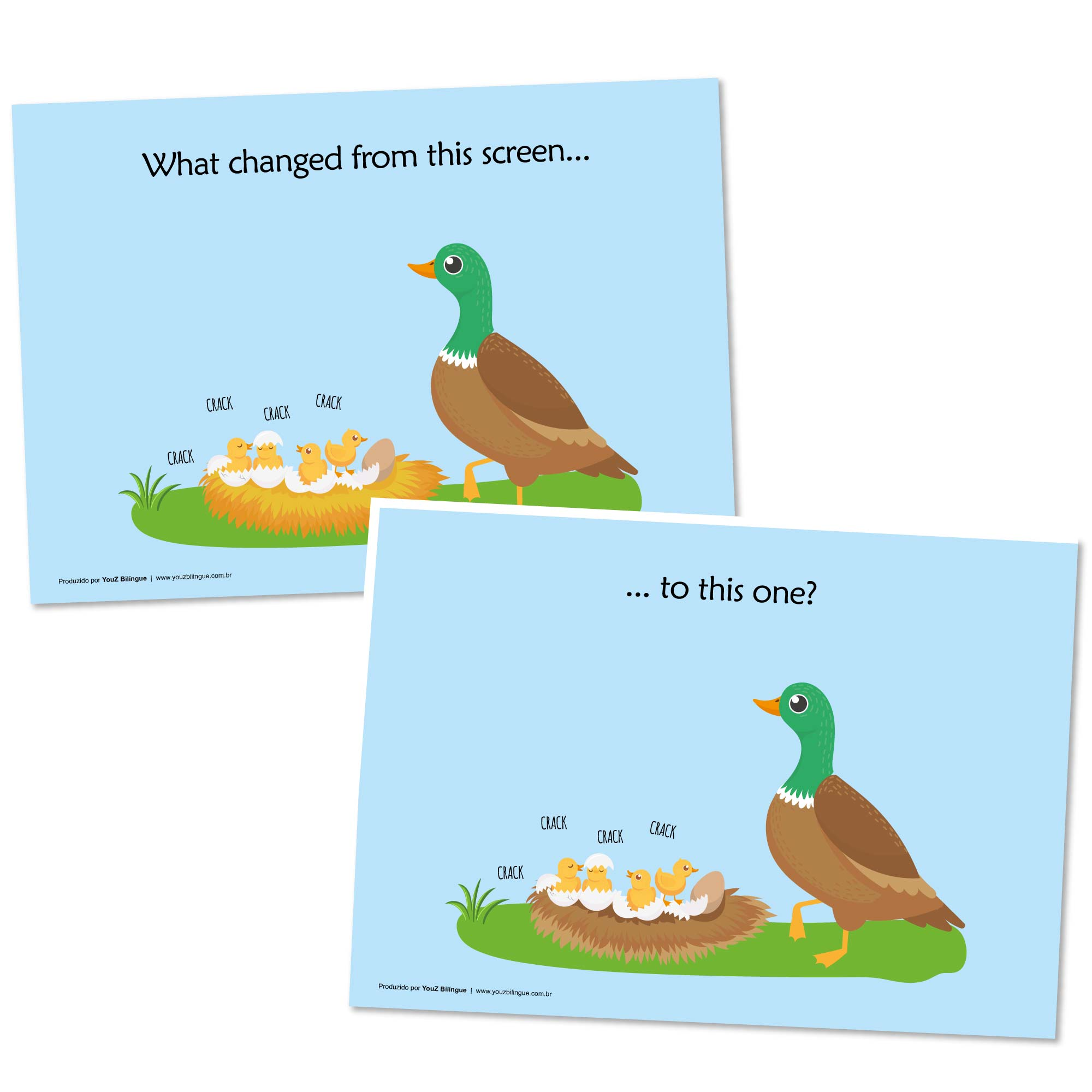 The Ugly Duckling - Storytelling activities