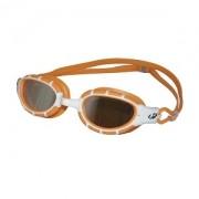 Óculos de Natação Hammerhead Fusion Mirror