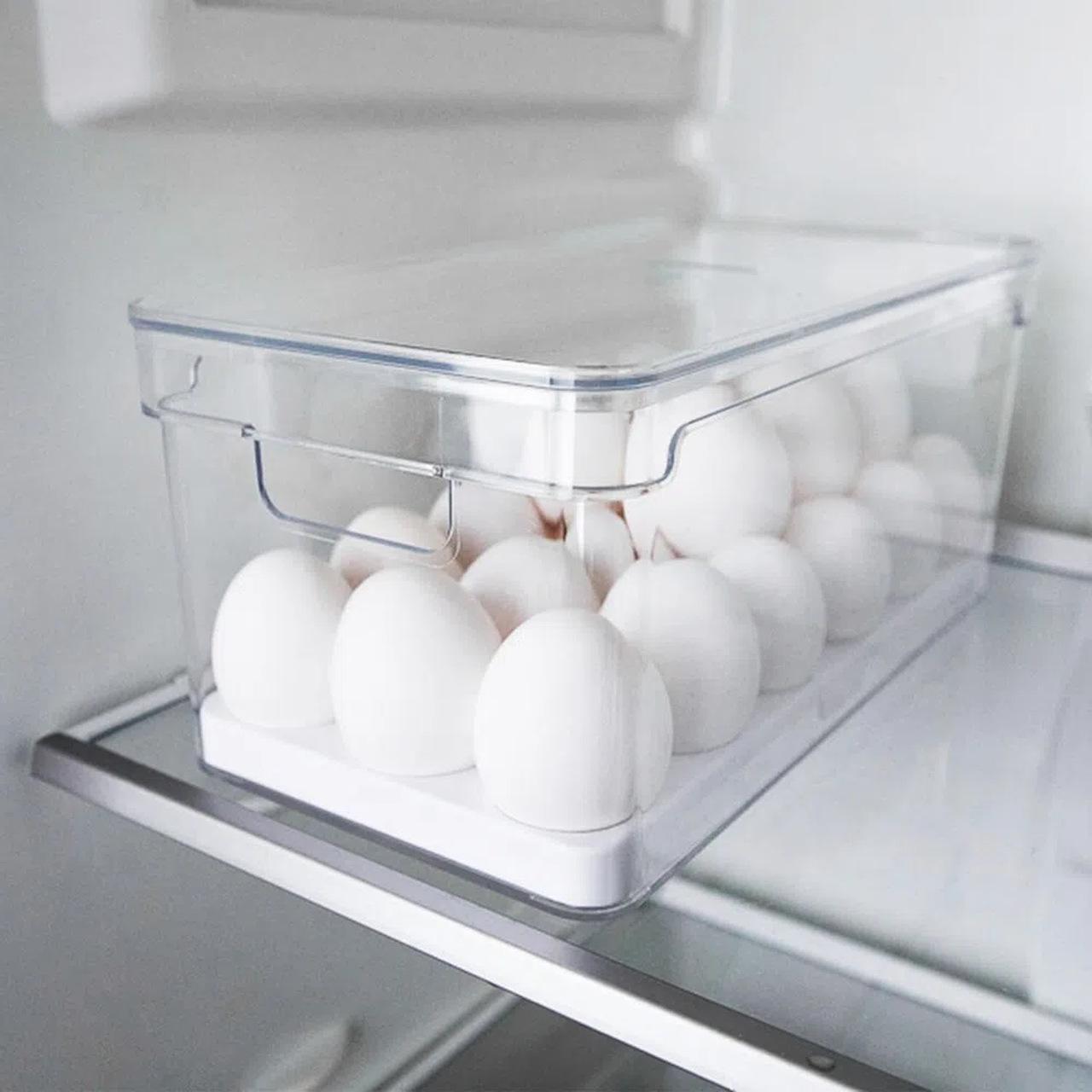 Organizador de Ovos com Tampa - 36 Ovos  - CASACOBRE