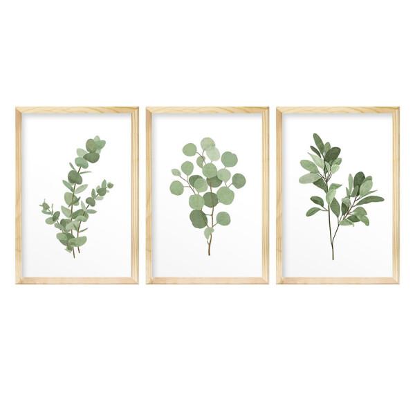 Kit 3 Quadros de Parede para Cozinha 40x60cm Folhagem Verdes Plantas Natureza - Hugart