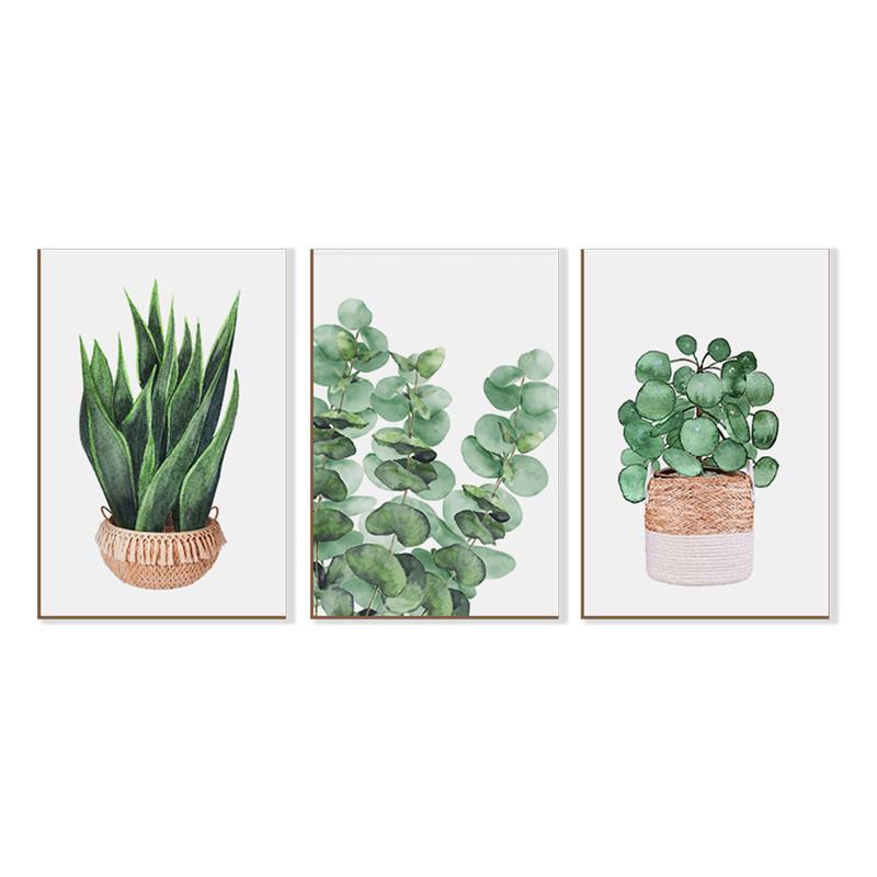 Kit 3 Quadros sem Moldura Plantas Folhagens Cozinha Sala