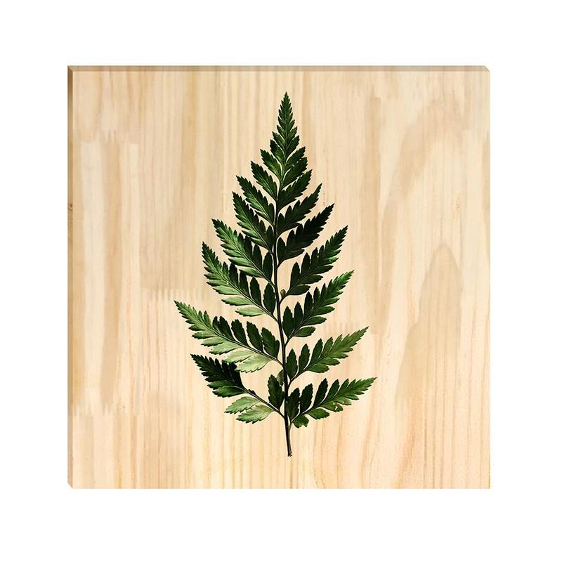 Quadro de Pinus Decorativo Folha 30x30