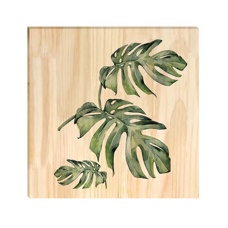 Quadro de Pinus Decorativo Monstera Jardim Folha 20x20