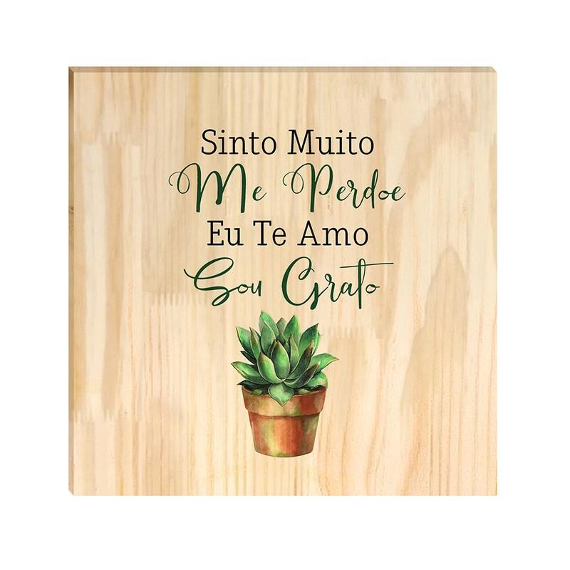 Quadro de Pinus Decorativo Sinto Muito 20x20