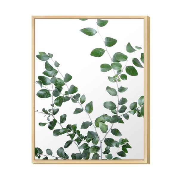 Quadro para Decoração de Sala 30x40cm Ramos de Folhas Verde Moldura Caixa Pinus - Hugart