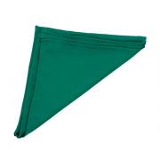 Guardanapo de Tecido Verde 45x45cm