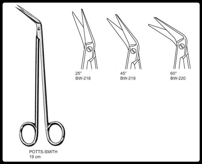 Tesoura Potts Smith 19cm