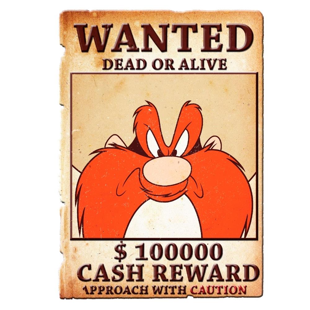 Placa Parede Metal Recortada Looney Yosemite Wanted