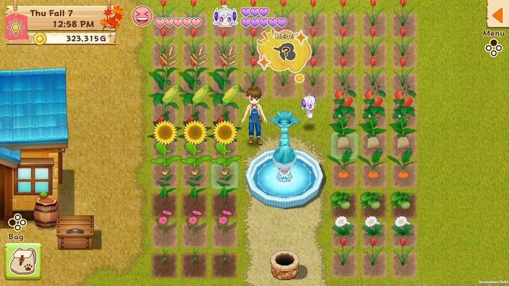 Jogo Nintendo Harvest Moon Light Of Hope Special Edition In