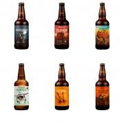 Kit Degustação com todos os rótulos da Cerrado Beer - 6 Garrafas