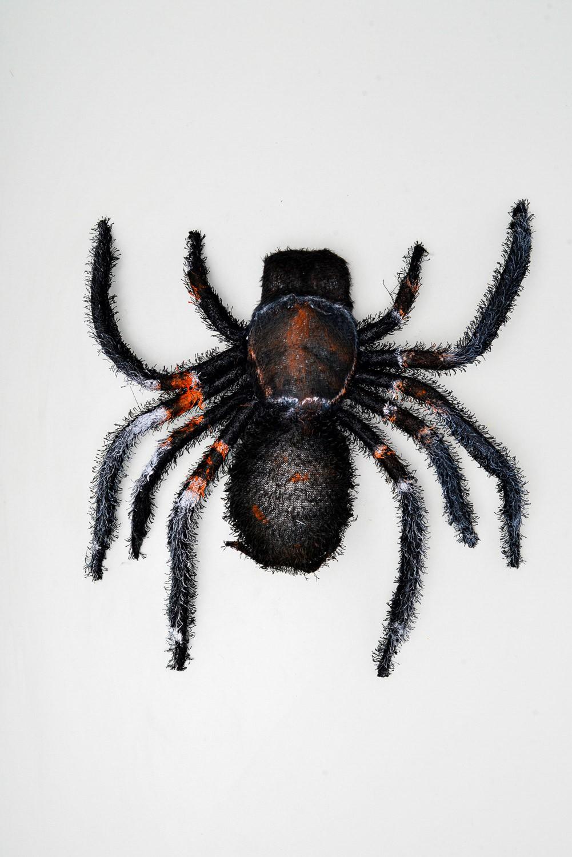 Aranha Isopor
