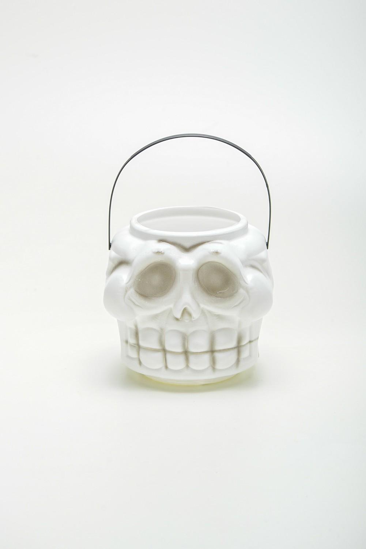 Cranio Alfa