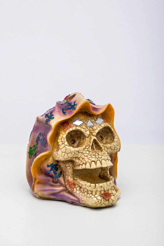Cranio C/ Capuz Resina