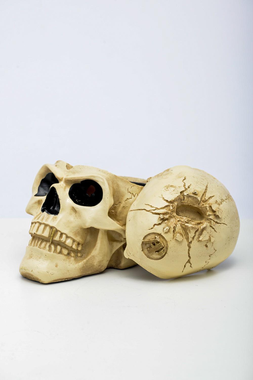 Cranio Cinzeiro C/ Tampa Resina