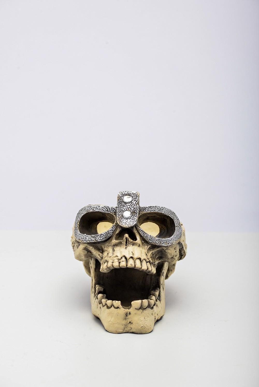 Cranio Cinzeiro Resina