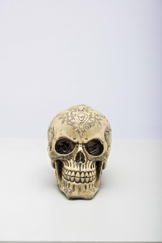 Cranio Tribal Resina