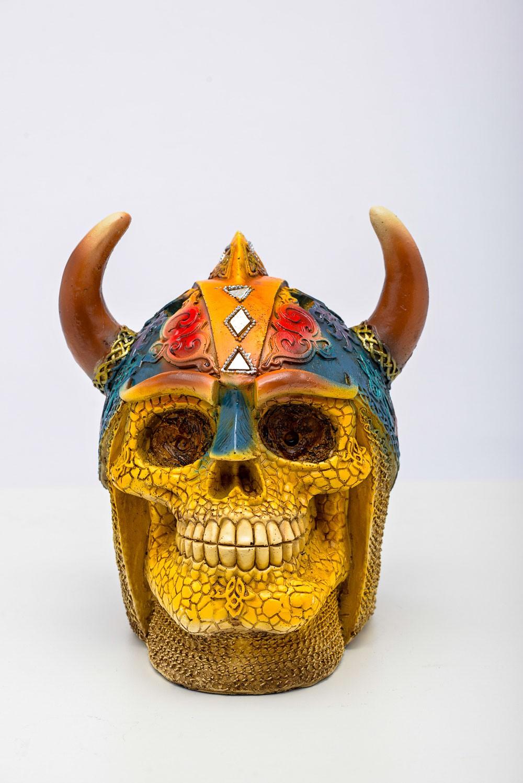 Cranio Viking Resina