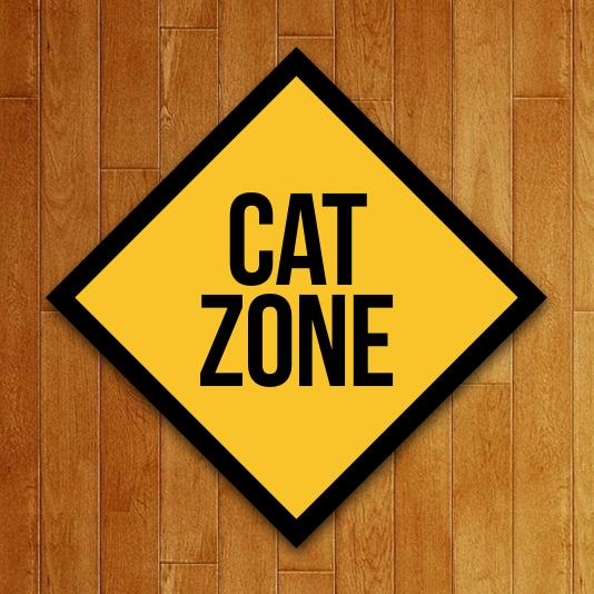 Placa Decorativa Cat Zone